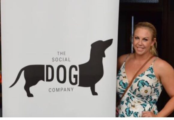The Social Dog Company